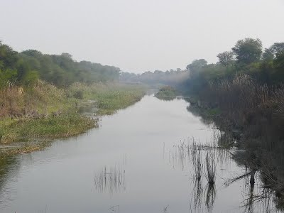 Yamuna River in Sonepat District