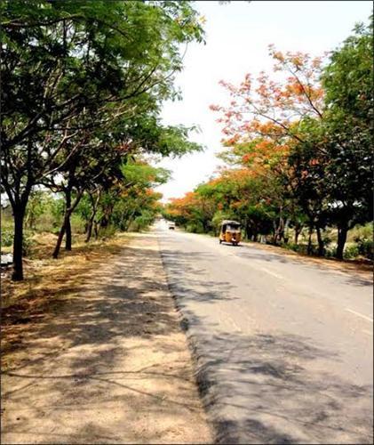 Road transport in Medak