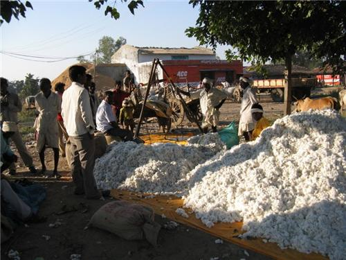 Cotton market in Adilabad