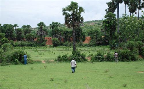 Nalgonda Agriculture