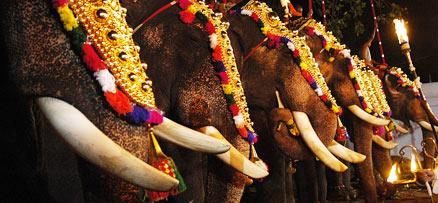One Day Trips Thiruvananthapuram to Adoor