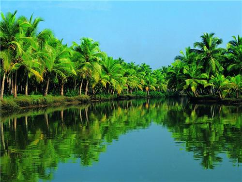 backwaters in thiruvananthapuram