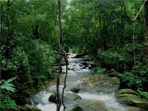 Ponmudi Tour Thiruvananthapuram