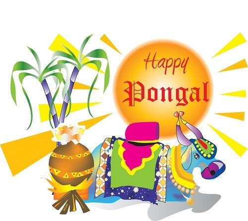 Pongal Festival Greetings