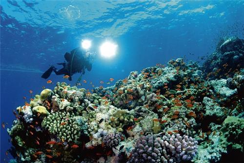 Rameswaram Scuba Diving