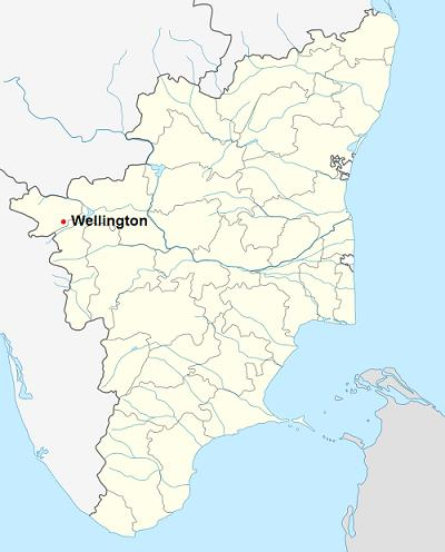 About Wellington