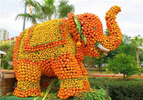 Orange Festival of Tripura