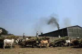 Economy in Baghpat