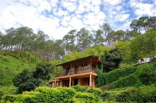 woods resort,almora