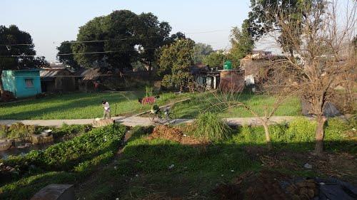 Doiwala Town