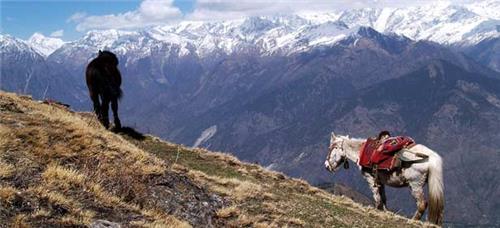 Trails from Munsiari to Milam Glacier