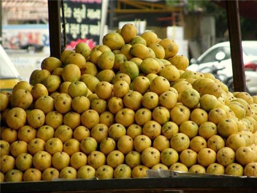 Mango Wholesalers Valsad