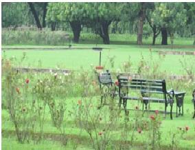 Garden in Varanasi