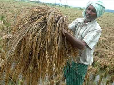 Business and Economy of Vijaywada