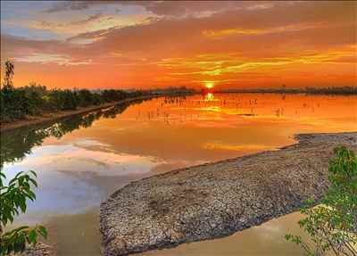 The Breathtaking Sunderbans-Credit Google