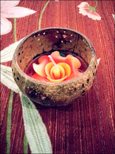Celebrating Diwali In A Eco Friendly Way