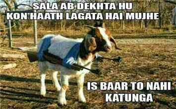 Get The Complete Feel Of Bakra-Eid Via These Awesome Memes