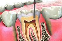 Geeta's Advanced Dental Clinic