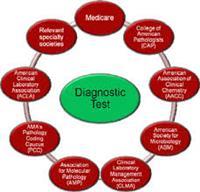 Choudhary Diagnotic Centre