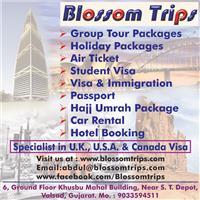 Blossom Trips
