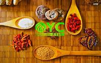 OYC Fresh