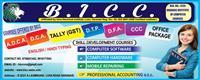 Banaras Institute of Computer Courses