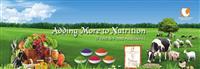 Vinayak Ingredients India Pvt Ltd