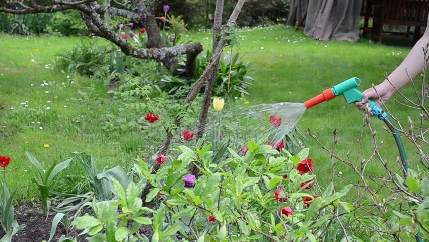 PVC Garden Pipes in Lakhe Nagar Raipur by Mahesh & Company - Photos ...
