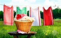 Royal Home Laundry