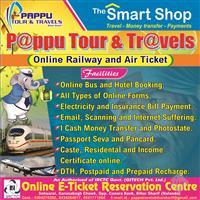 Pappu Tour & Travels