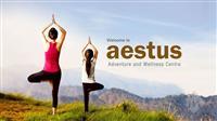 Aestus Kasauli Resort