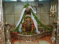 Shraddha Travels