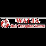 Walia Hair Transplant Center