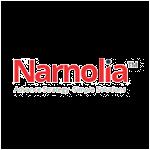 Narnolia Securities  Ltd