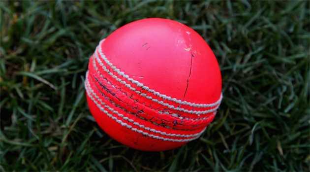 Pink-Ball-cricket-5-1-16