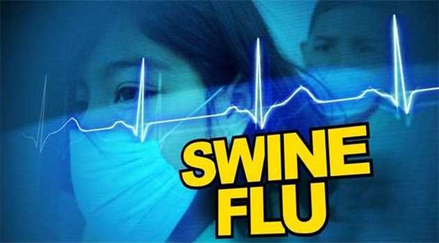swine-flu-kills-11-rajasthan