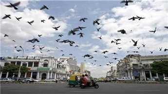 Pleasant Friday in Delhi, rain likely on Saturday