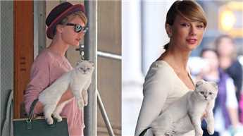 Taylor Swift's cat is 'allergic to joy'