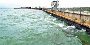 Tamil Nadu moves SC for full-time Chairman for Cauvery Water Management Authority
