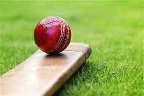Cricket-736545950