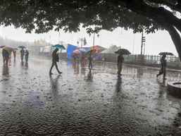 IMD forecasts fresh spell of wet weather and hailstorms in North India for next 48 hours