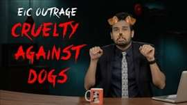 EIC Outrage: Cruelty Against Dogs