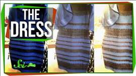The Science of That Dress