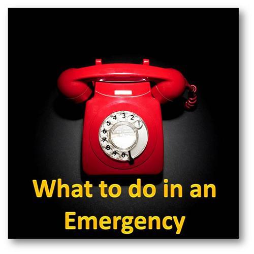 Emergency Numbers in Barnala