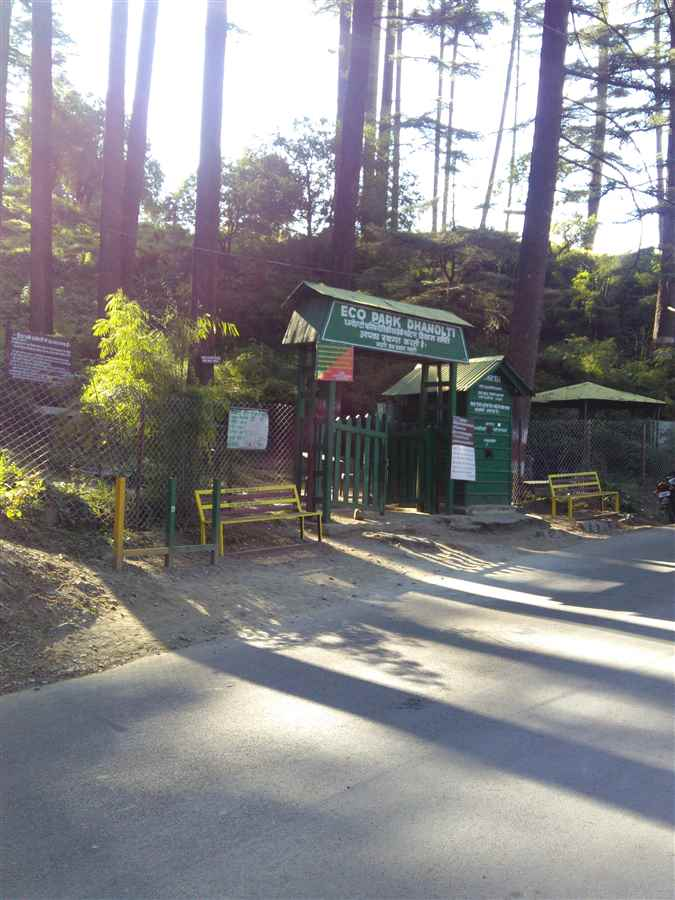Attractions of Dhanaulti