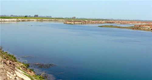 Sonepat River