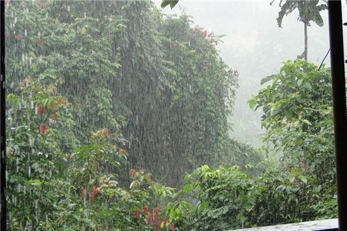 Sonepat Rainy Season