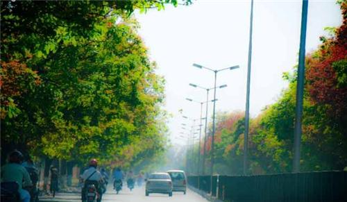 Spring in Ajitgarh