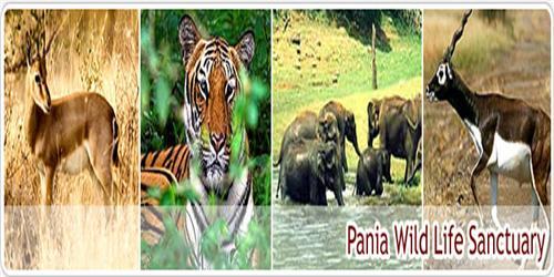 Pania Wild life Sanctuary