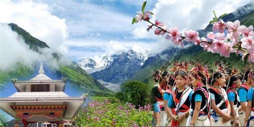 Arunachal Pradesh Orchid State of India